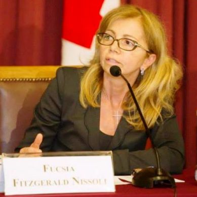 Elezioni Com.It.Es.: la Vice ministro Sereni risponde all'On. Nissoli